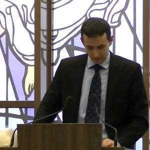 Gabriel Ciocarlan 25 01 2014
