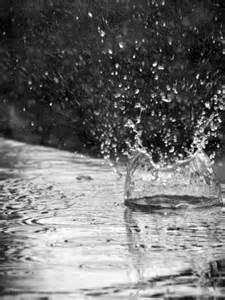 ploaie cu basici