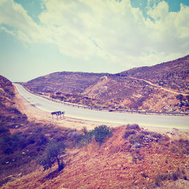 Meandering Road in Hills of Samaria, Instagram Effect