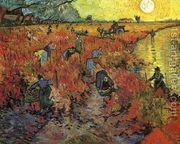 vineyard 7- picura celebra