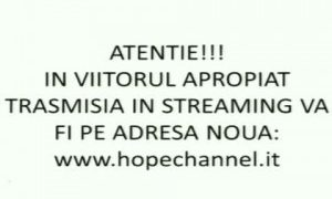 streaming nou