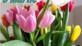 Ziua Internațională a femeii sărbătorită la CASA ADRA