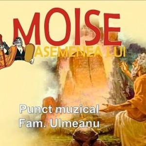 Punct muzical: Fam. Ulmeanu