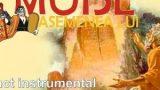 Punct instrumental: Mioveni