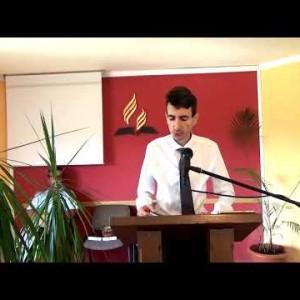 """Forme de idoli"" Daniel Sercau"
