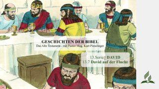 GESCHICHTEN DER BIBEL: 13.7 David auf der Flucht – 13.DAVID | Pastor Mag. Kurt Piesslinger