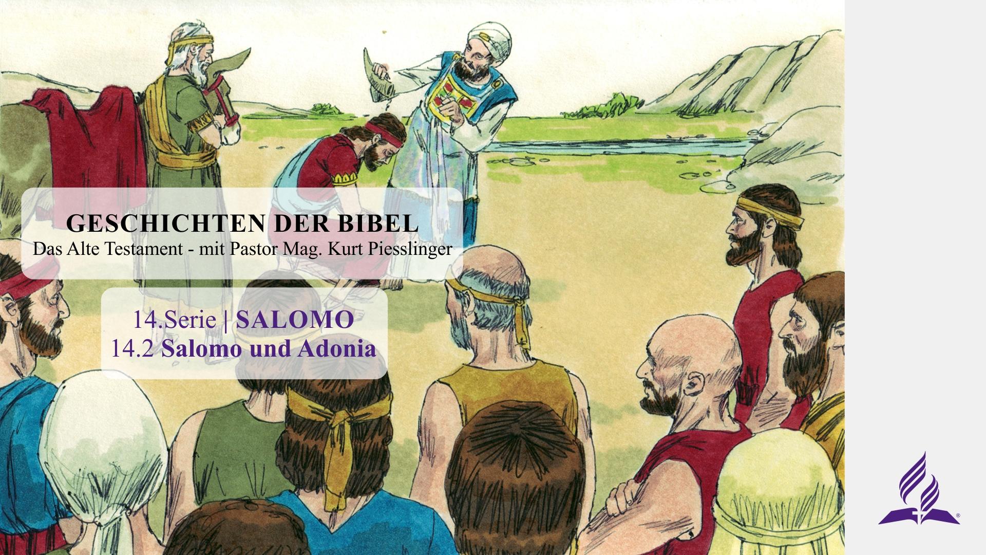 14.2 Salomo und Adonia x