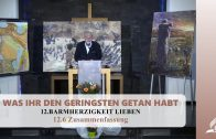 12.6 Zusammenfassung – BARMHERZIGKEIT LIEBEN | Pastor Mag. Kurt Piesslinger
