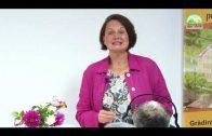 Program Bemutatása – Mezőménesi Életmódközpont