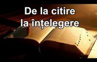 Studiul 01 – De la citire la înțelegere