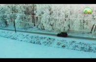 Mercedes G Class Winter OffRoad | Mezőménes | Herghelia