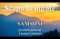 Samsoni – Lucian Crsitescu